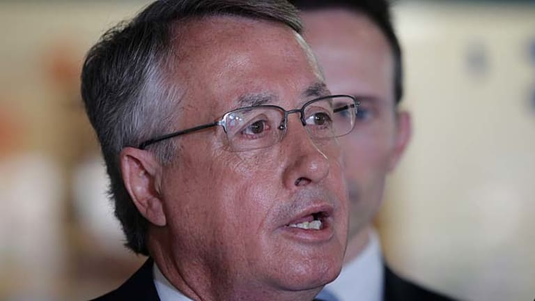 Wayne Swan ... suggests the mining tax legislation could be changed.