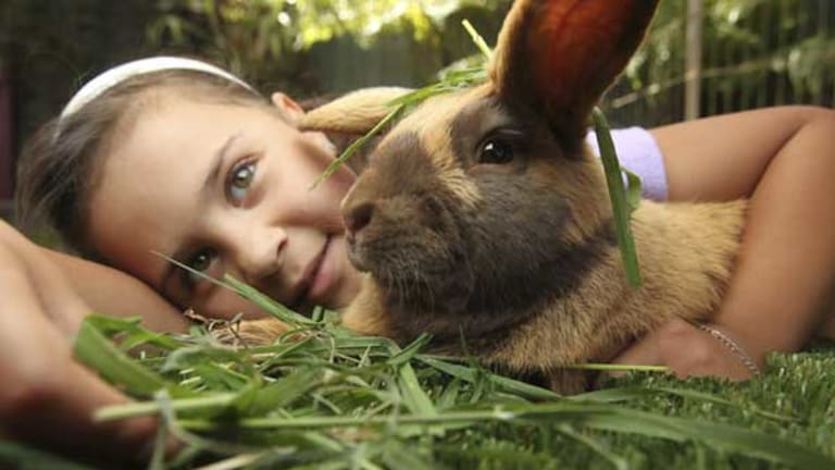Kyra Wallace with her pet rabbit, Thumper.