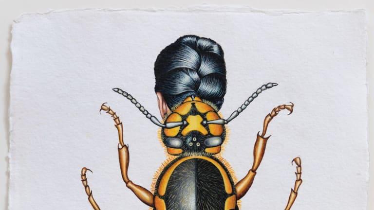 Deborah Klein's  <i>European Wasp Woman</i>, 2015.