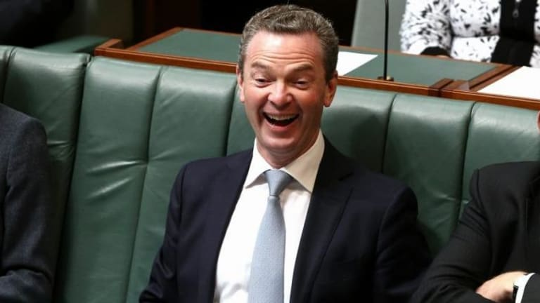 """""""You're such a ..."""": opinions vary on the word Christopher Pyne used."""