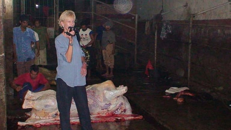 Former police officer Lyn White captures video evidence of an Indonesian slaughterhouse's practices.