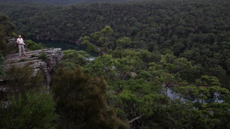The Royal National Park has a fraction of the staff it once had to look after it.