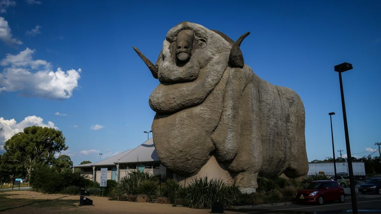 Ryan chose not take take Davina to see the Big Merino in Goulburn. She didn't deserve such a treat.