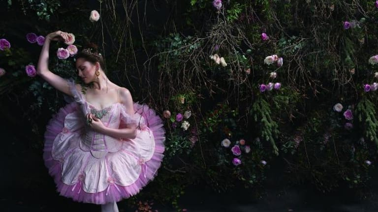 Queensland Ballet's <i>Sleeping Beauty</i>, featuring Principal Dancer Clare Morehen.