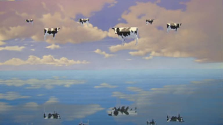 ''I've always painted cows and drawn cows but I've never shown them'' ... Andrew Baines's <i>Flocculent Fresians</i>.