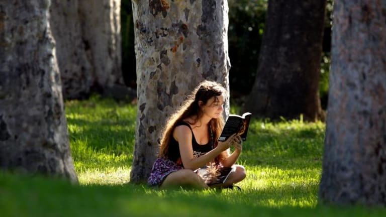 The joys of reading.