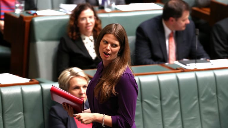 Labor MP Kate Ellis has called for the Liberal party to increase its female representation with 'real action and strategies put in place'.