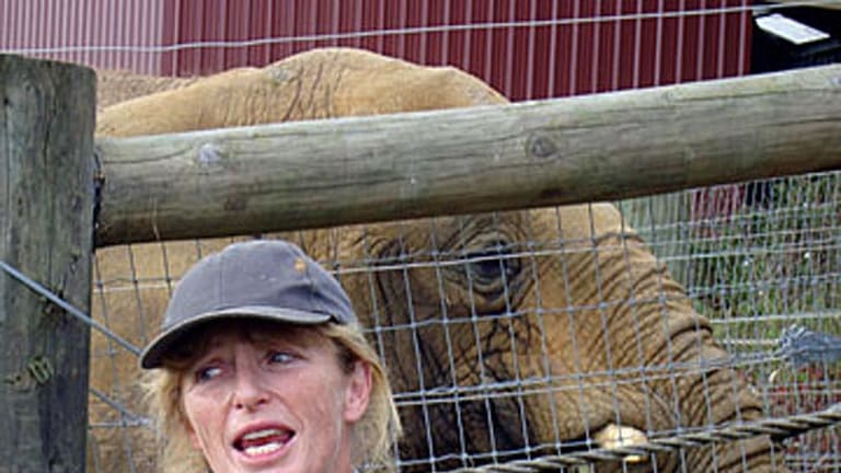 'Not a happy life' ... Helen Schofield pictured with Mila, just hours before the elephant killed her.