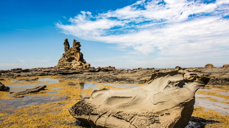 The Bunurong Coastal Drive offers scenic views of rugged sandstone cliffs, rocky headlands and sandy coves.