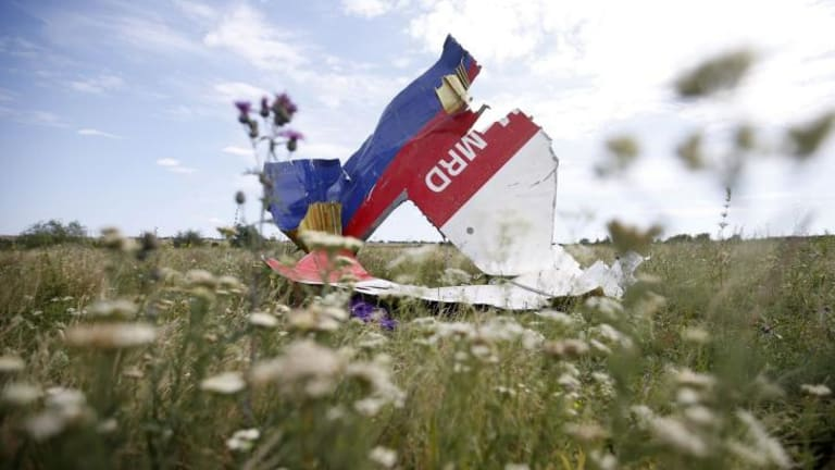 A part of the wreckage of Malaysia Airlines flight MH17 near Hrabove in the Donetsk region of Ukraine.