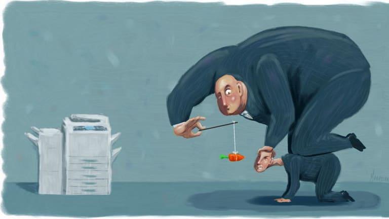 <i>Illustration: Matt Adams</i>