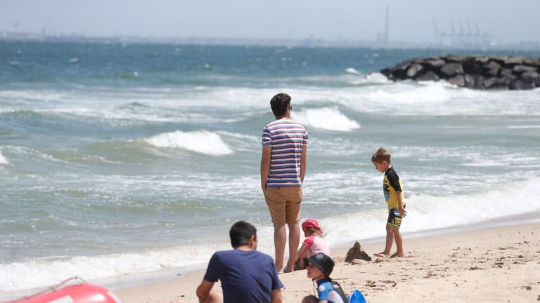 Beachgoers at Elwood stick to the sand after a sighting at nearby St Kilda.