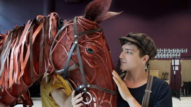 Cody Fern, who plays Albert in War Horse.