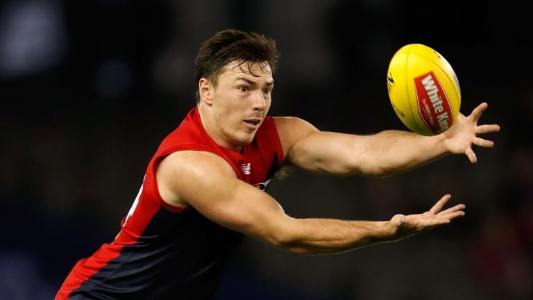 Michael Hibberd is in career best form at the Demons so far in 2017.
