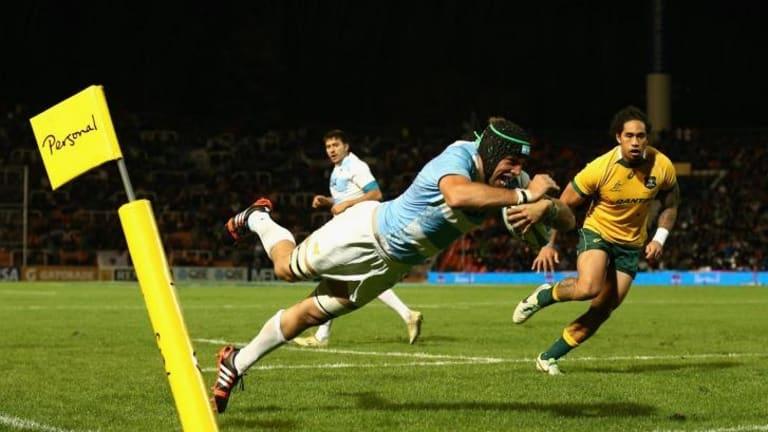 Leap of faith: Leonardo Senatore gave the Pumas hope with his try.