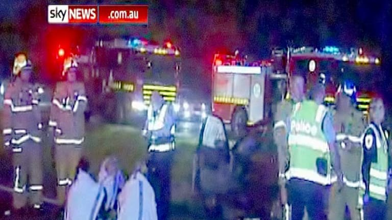 Emergency crews tend to a stunned driver and passengers after their car ploughed into falling livestock.