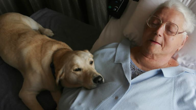 FILE PHOTO: June Middleton photographed last December with her dog, Angel at the Yooralla Ventilator Accomodation in Thornbury, Melbourne.