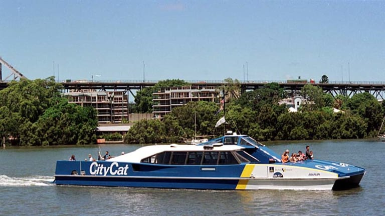 Brisbane's CityCats are back in business.