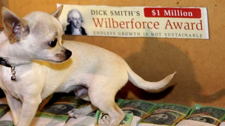 A small dog sits on $1 million in an old suitcase  as Australian entrepreneur Dick Smith announces   his Wilberforce Award.