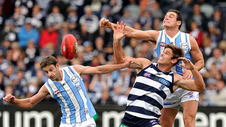 Big hit: Kangaroo Nathan Grima gets a fist to win this contest with Cats' forward Tom Hawkins, but his side eventually faltered under relentless pressure from Geelong.