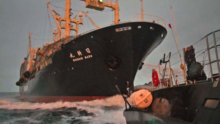 The Nisshin Maru