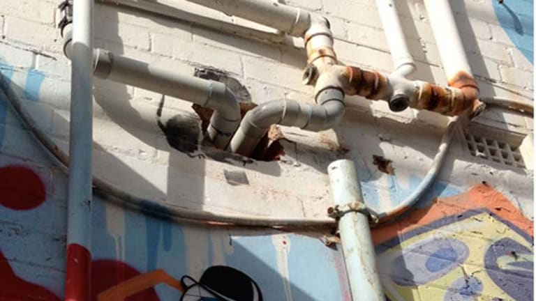 The remains of Banksy's parachuting rat.