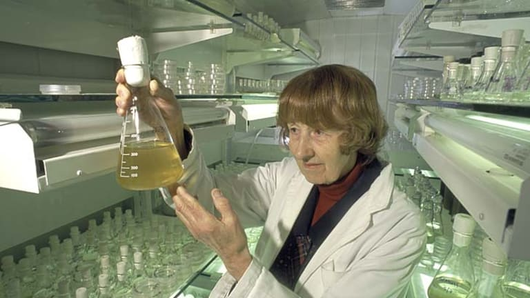 Finding a solution: Shirley Jeffrey was christened ''The Mother of Chlorophyll C'' by one of her mentors.