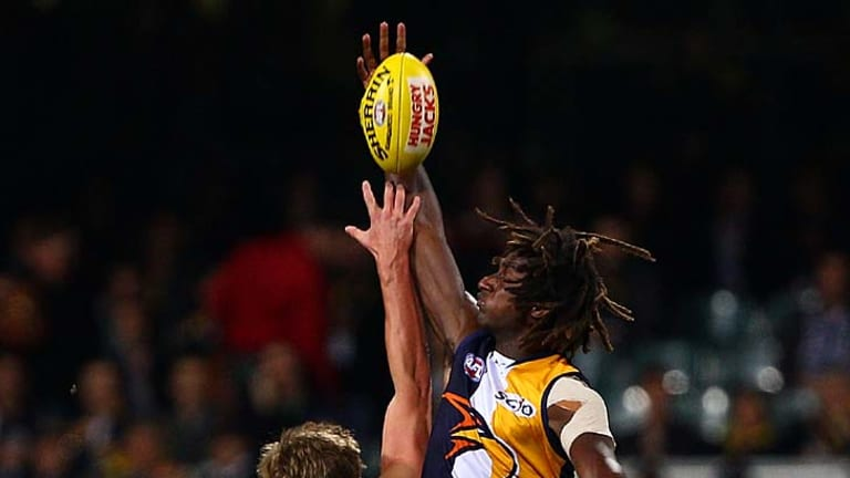 Fly like an Eagle: Nic Naitanui rises above Geelong's Nathan Vardy.