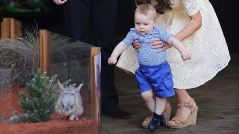 Prince George learnt how to walk in Australia, says Vanity Fair