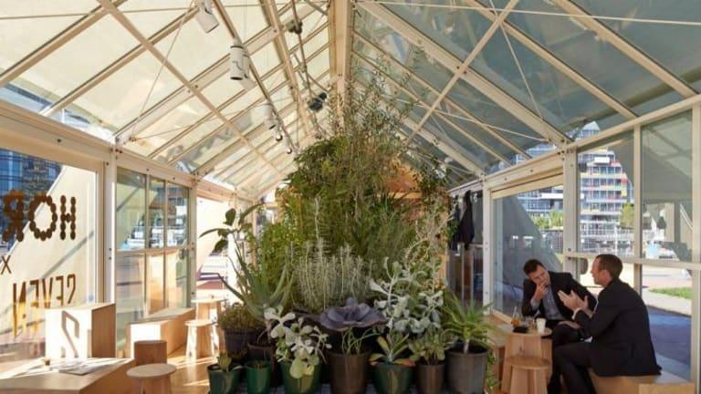 Hortus project at Melbourne's Docklands.
