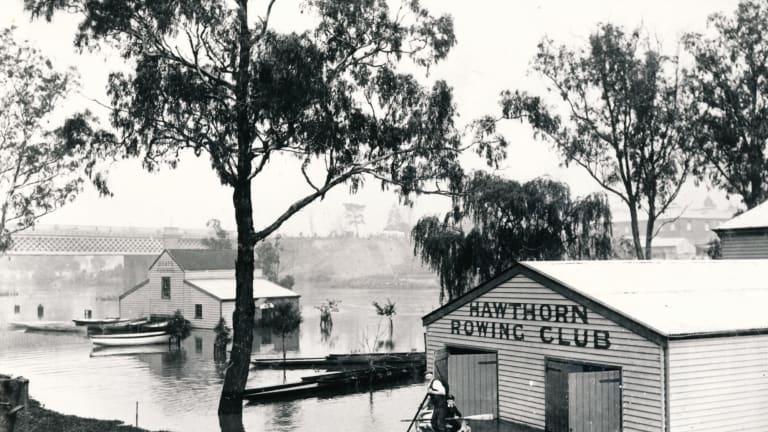 Hawthorn Rowing Club during the 1923 flood.
