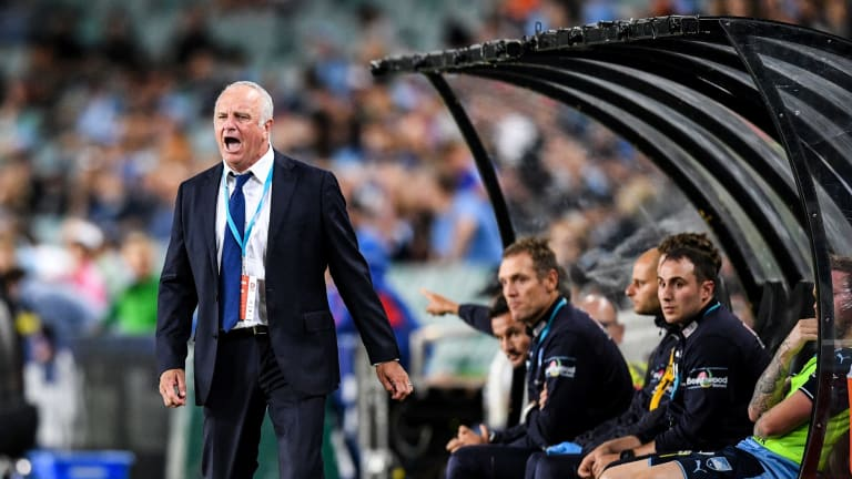 Confident: Sydney FC Graham Arnold.