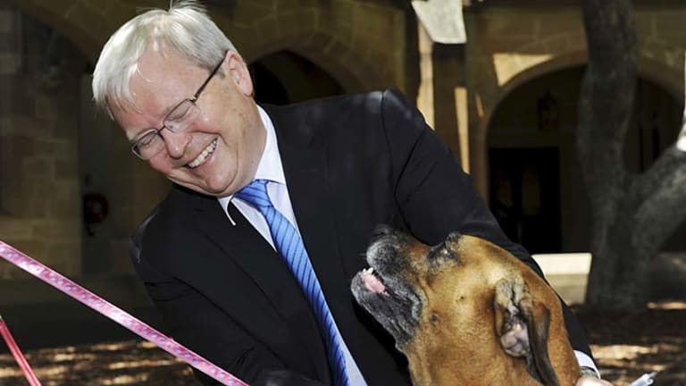 """""""I was skeptical about your offer until I saw free beer"""" ... Kevin Rudd."""