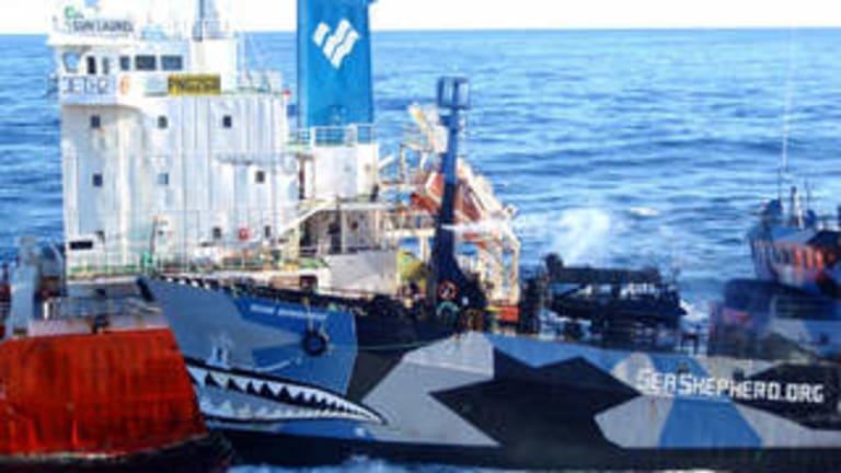 Sea Shepherd ship Bob Barker colliding with the Japanese fuel tanker the Sun Laurel off Antarctica.