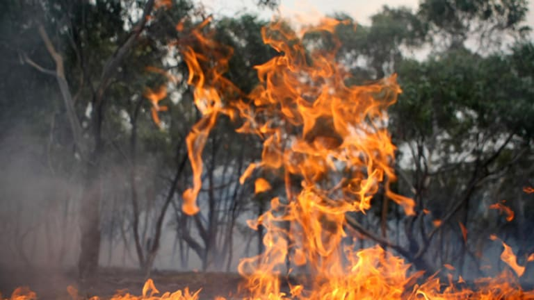 The Morrisons fire, west of Melbourne, in January.