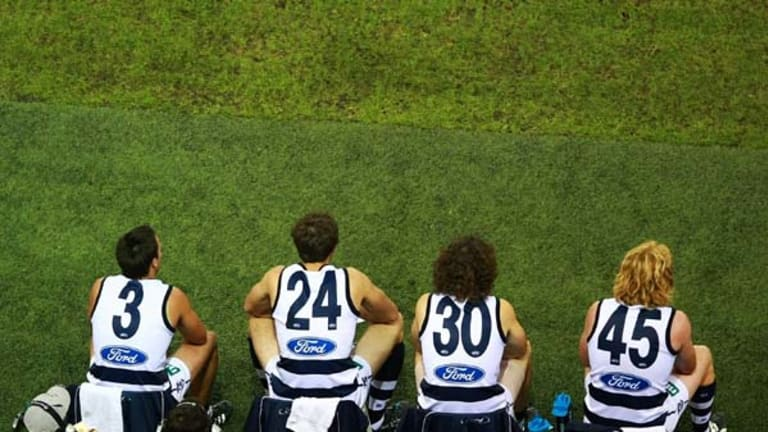 Settle in, boys, there's no hurry. Cats on the bench.