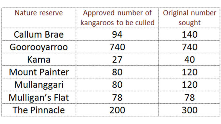Kangaroo culling: The numbers game.