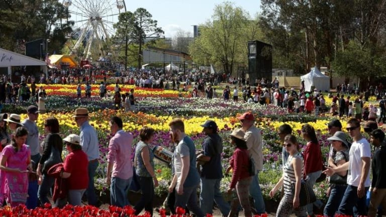 Crowd pleaser: This year's Floriade festival has broken attendance records with more than 480,000 people flowing through the gates.