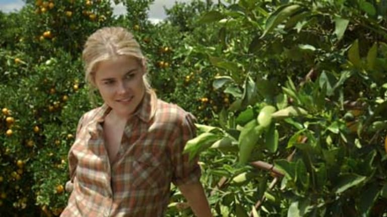 Rachael Taylor plays a talented musician returning to Australia in Summer Coda.