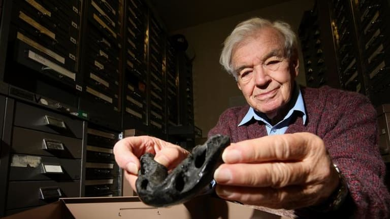 Professor Ken Campbell inspects a Dipnorhynchus - Sussmilchi specimen collected at Wee Jasper at the ANU School of Research Sciences.  Prof. Campbell has just been awarded the Raymond C. Moore Medal from the Society for Sedimentary Geology for Excellence in Paleontology.