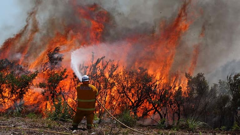 Backburning at Redhead in the Hunter Valley.