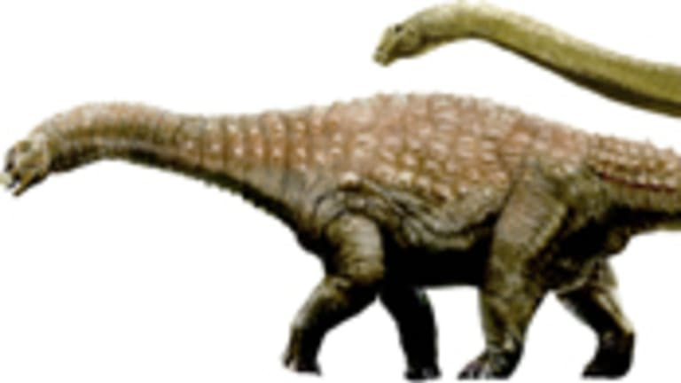 The three newly discovered dinosaurs, nicknamed Matilda, Clancy and Banjo.