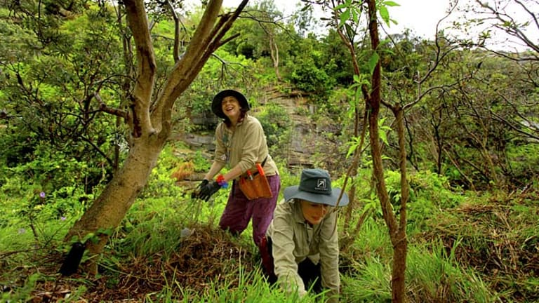 New digs ... Lindi Luu Joy and Mary-Ann Johnson get their hands dirty at Diamond Bay Reserve, Vaucluse.