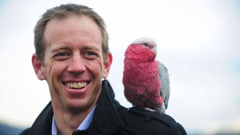 A galah joined Shane Rattenbury at the RSPCA's Weston HQ for the announcement about the new facility.