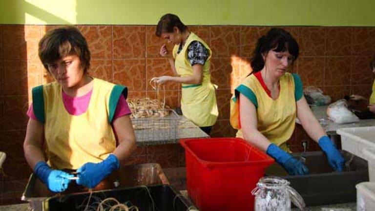 Women work at a hair factory in Yukhnov, Kaluga region, Russia.