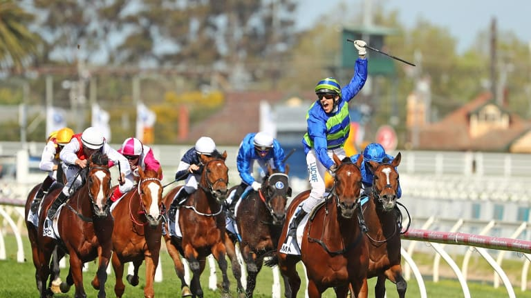 MELBOURNE, AUSTRALIA - OCTOBER 15: Jockey Nicholas Hall riding Jameka celebrates as he wins race 8 the BMW Caulfield Cup on Caulfield Cup Day at Caulfield Racecourse on October 15, 2016 in Melbourne, Australia. (Photo by Scott Barbour/Fairfax Media) *** Local Caption *** Jameka; Nicholas Hall