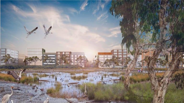 A tidal park in Port Melbourne envisaged by RMIT researchers.