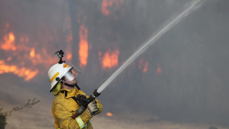 A firefighter tackling a bushfire at Winmalee in October 2013.
