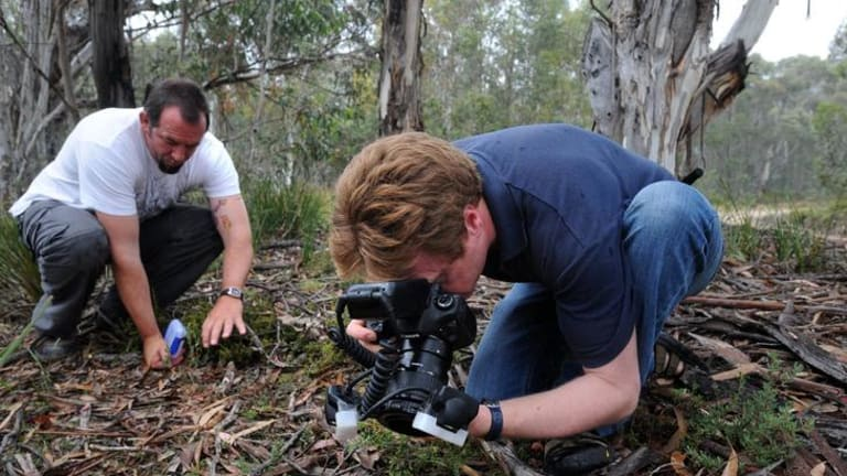 Naturalist Stuart Harris, left, and scientist Dr Jurgen Otto  have discovered and photographed a new spider species at Namadgi National Park.