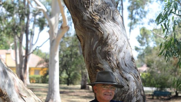 Ngambri elder Shane Mortimer,  with the disputed tree in Corroboree Park in Ainslie.